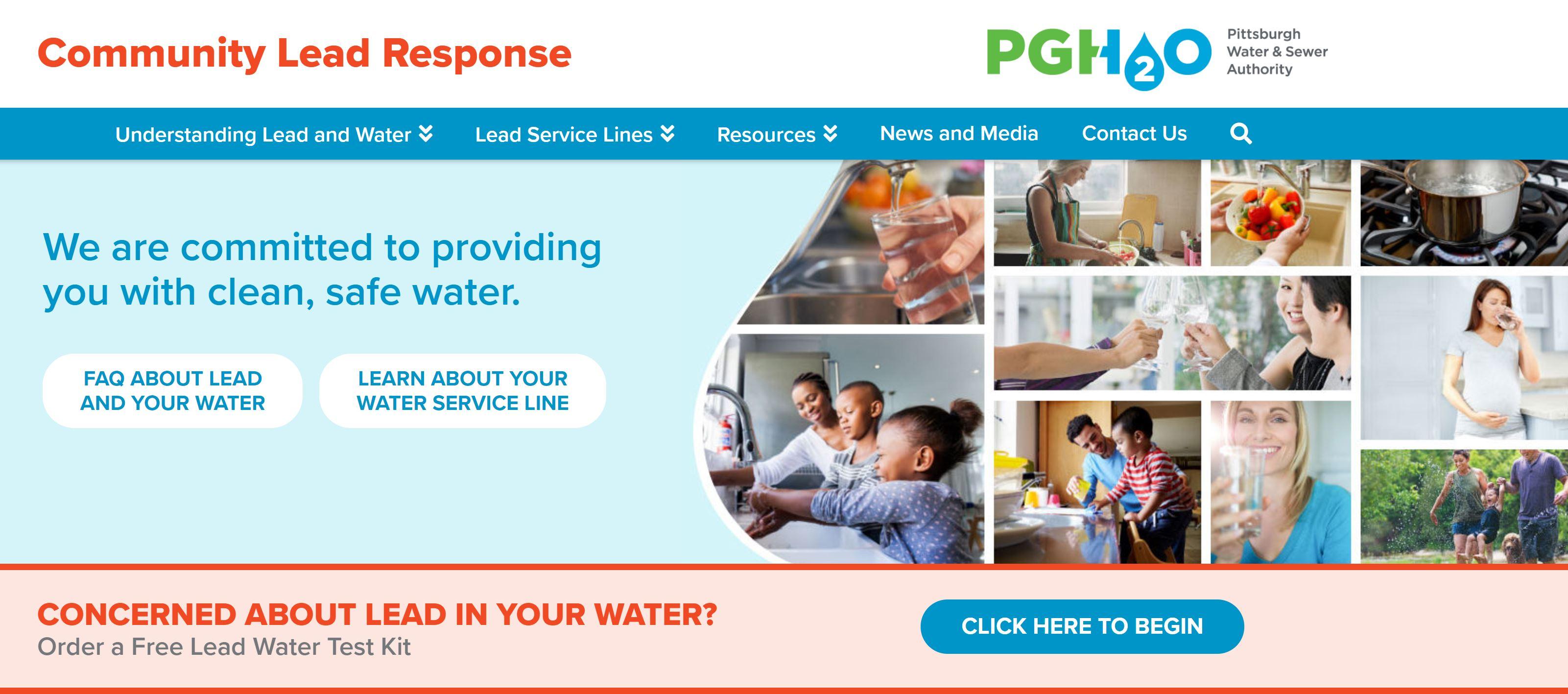 Screen-capture of Lead microsite homepage