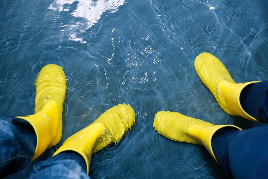 Stock image of people wearing yellow rain boots standing on a rain covered sidewalk
