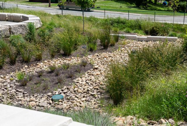 A portion of the Hillcrest stormwater project featuring the upper bioswale