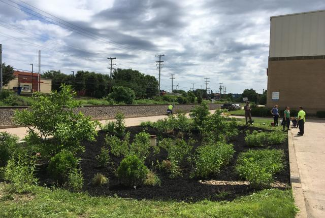 Photo of the rain garden at our water treatment plant in 2018