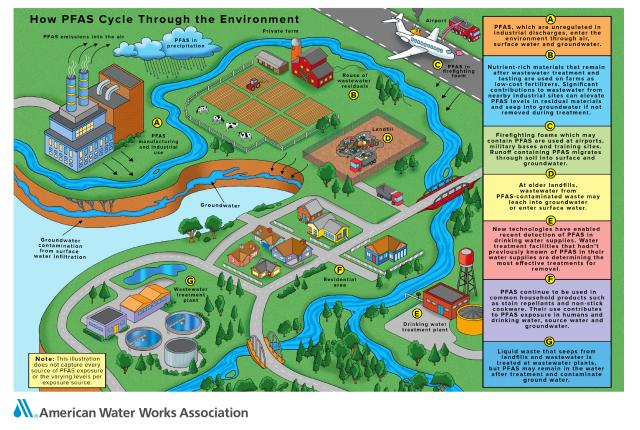 Infographic illustrating how PFAS cycles through the environment